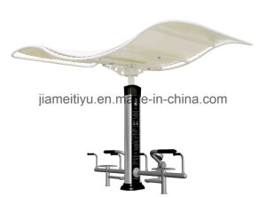 Professional Landscape Outdoor Fitness Equipment Waist & Abdomen Trainer pictures & photos