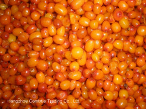 IQF Sea Buckthorn Berry