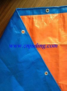 Blue/Orange Tarpaulins