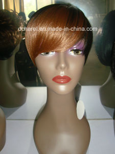 Human Hair Lace Front Wigs pictures & photos
