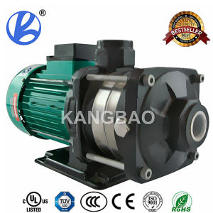 Pump Motor pictures & photos