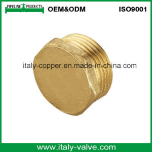 OEM&ODM Quality Brass Forged Plug (AV70013) pictures & photos