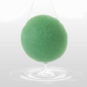 Green Tea Konjac Sponge for Face Cleansing pictures & photos