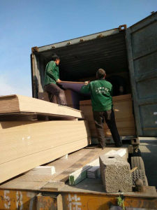 Plain MDF Board/Raw MDF Board pictures & photos
