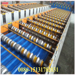 Dx Made in China Color Steel Roof Sheet Making Machine pictures & photos