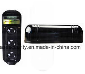 3 Beams Active Outdoor Beam Detector for Wired Usage (ABE-250) pictures & photos