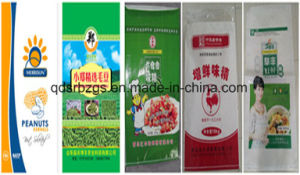 China Made PP Woven Bag for Foodstuff pictures & photos