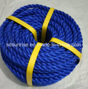 PP Rope in Blue Yellow or Red pictures & photos
