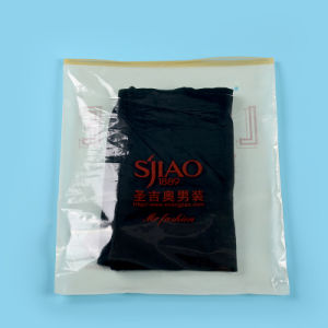 Branded High Quality Printed Ziplock Plastic Bags for Clothing (FLZ-9224) pictures & photos