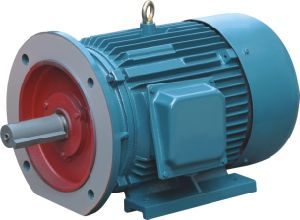 Ce 740rpm 8p Tefc Three Phase Induction Motor pictures & photos