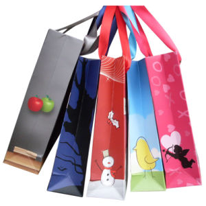 Printing Paper Bags for Packing and Shopping pictures & photos