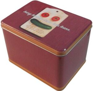 Square Dry Food Tin Box pictures & photos