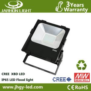 Energy Saving CREE Chip 100W LED Flood Light