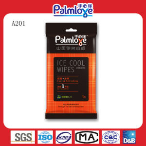 Business Single Pack Wipes, Travel Wipes, Airline Wipes pictures & photos