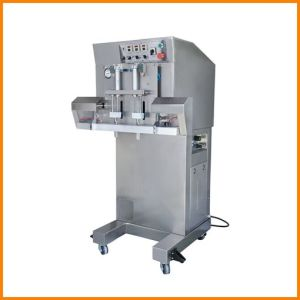 Packing Machine, Packaging Machine for Vacuum Packing and Gas Flushing