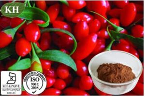 Pure Natural Oganic Wolfberry Extract Polysaccharides 10%-40%; Wolfberry Extract Powder; Goji Powder pictures & photos