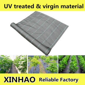PP Weedmat, Plastic Mulch Weed Barrier Fabric, Anti Weed Fabric pictures & photos
