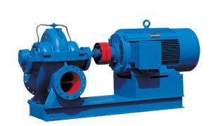 Single Stage Double Suction Pump (MS) pictures & photos