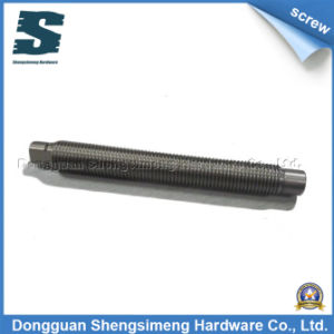 Customized Lead Screw (TR22 P2.5)