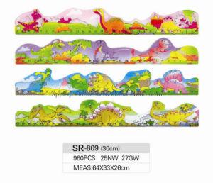 Plastic Ruler (SR-809)