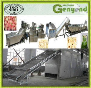 Hot Sale Dried Apple Chips Production Line pictures & photos