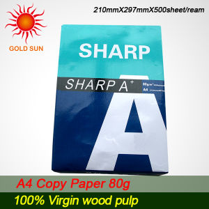 for Paper Making 100%Wood Pulp (CP0015) pictures & photos