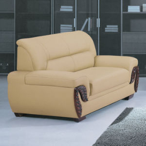 Factory Price Sectional Genuine Leather Sofa Furniture (C17) pictures & photos