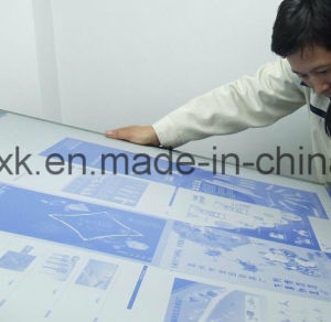 for Africa Market Thermal CTP Plate (P8) pictures & photos