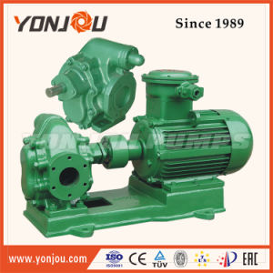 Cooking Oil Pump, Rotary Gear Pump, Gear Oil Pump, Oil Cogwheel Pump pictures & photos