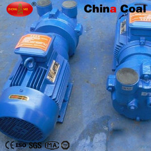 Cheap 2BV Series Water Ring Vacuum Pump pictures & photos