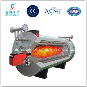Heat Conduction Oil Boiler (YYW/YQW) pictures & photos