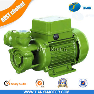 Kf1 Electric Pump 0.5HP Water Garden Pump AC Clean Water Pump pictures & photos
