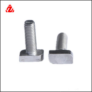 Customized Stainless Steel T Bolt Square Head Bolt pictures & photos