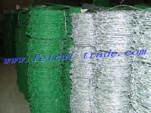 Galvanized Barbed Wire in China pictures & photos
