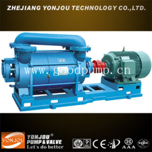 Vacum Pump pictures & photos