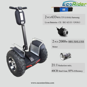 Double Battery Electric Chariot Scooter, Brushless 4000W Electric Vehicle pictures & photos