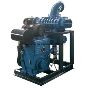 Roots Blower Rotary Piston Vacuum Pump System for Chemical Industry pictures & photos