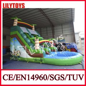 Lilytoys Backyard Inflatable Water Slide with Pool pictures & photos