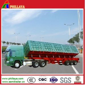 Heavy Truck Hydraulic Tipping Side Dump Trailer (PLY9825CXX) pictures & photos