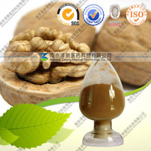 Factory Direct Supply Natural Peach Seed P. E. pictures & photos