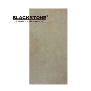 600X1200 New Porcelain Tile for Floor and Wall (BTYP1206-02) pictures & photos