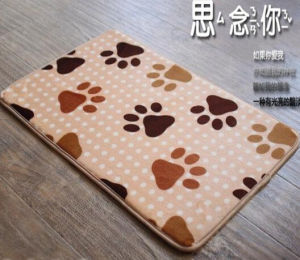 Hot Sale Beautiful Floor Mats for Living Room pictures & photos