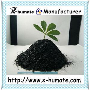 Potassium Humate From Leonardite or Lignite pictures & photos