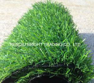 20mm Landscape Decoration Artificial Grass for Garden pictures & photos