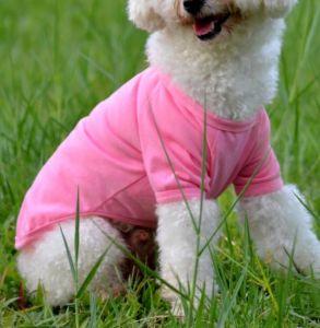Dog T-Shirt Pet Product Dog Apparel pictures & photos