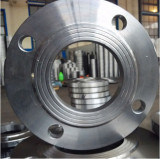 Forged Stainless Steel Plate Flange pictures & photos
