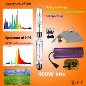 Factory Direct Supply Wholesale Price Mh HPS Lamp 400W Kits Plant Growing Lamp pictures & photos