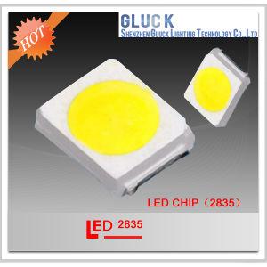 2835 SMD LED for Illumination Project LED Lighting