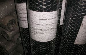 Chicken Wire, Hexagonal Wire Mesh (CTM-15) pictures & photos