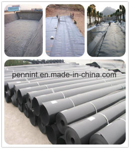Top Quality Leakproof Fish Farming HDPE Pond Liner pictures & photos